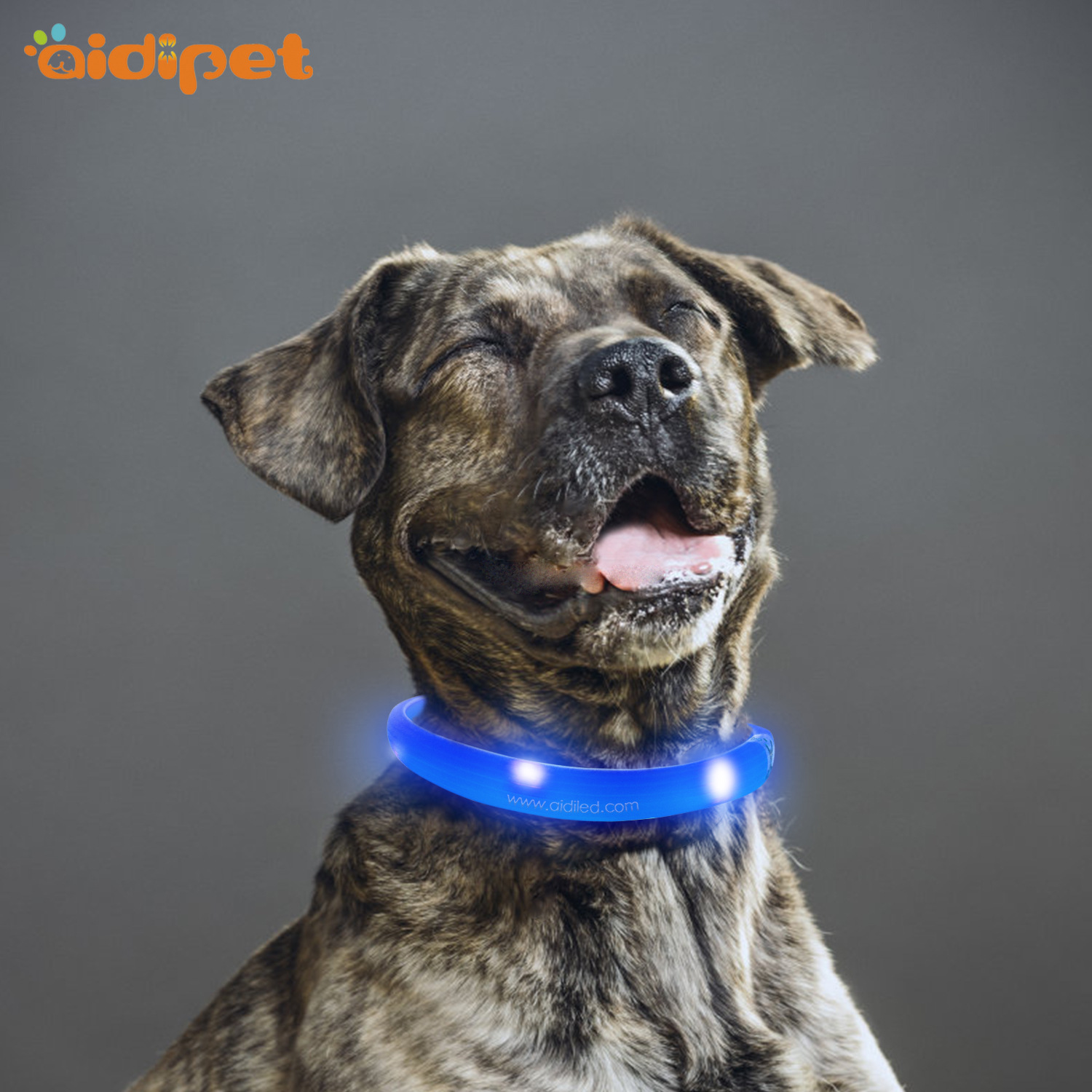 LED Pet Collar Thick And Pull Resistance Medium Large Dog Glowing Dog Collar USB Charging Dog Neck Ring