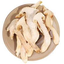 Matsutake mushroom (lto et lmai) cantor, rebanadas de matsutake seca, seta de grau premium canção rong, comida seca
