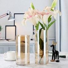 Креативная цветная ваза стеклянная для цветов композиция богатая бамбуковая водная культура ваза украшение для гостиной современный домашний декор