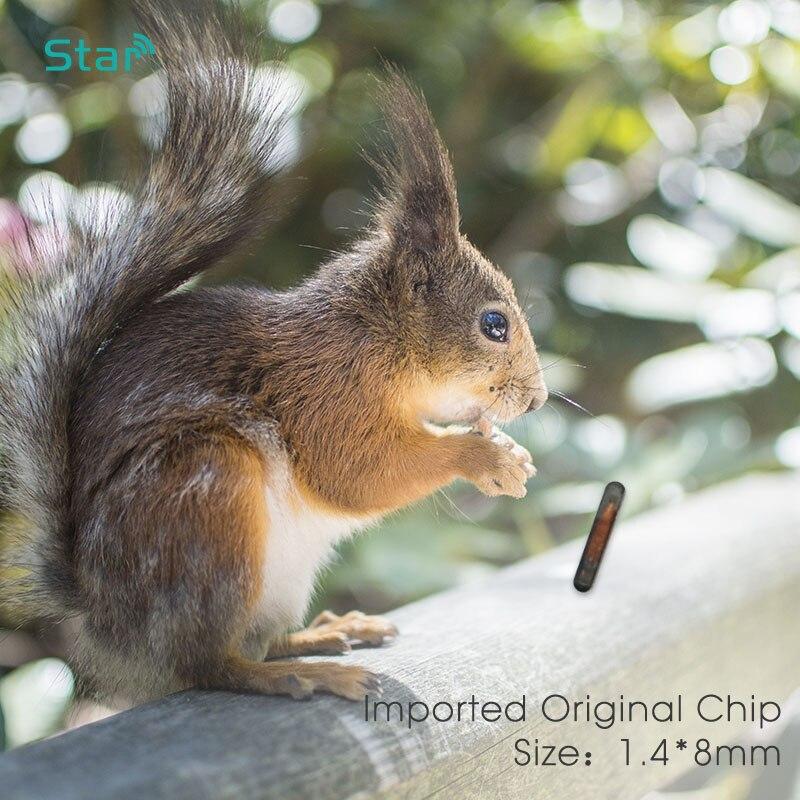 Closeout DealsRFID Syringe Animal-Microchip Pet-Dog-Cat-Fish ISO11784/5 ICAR FDX-B Number