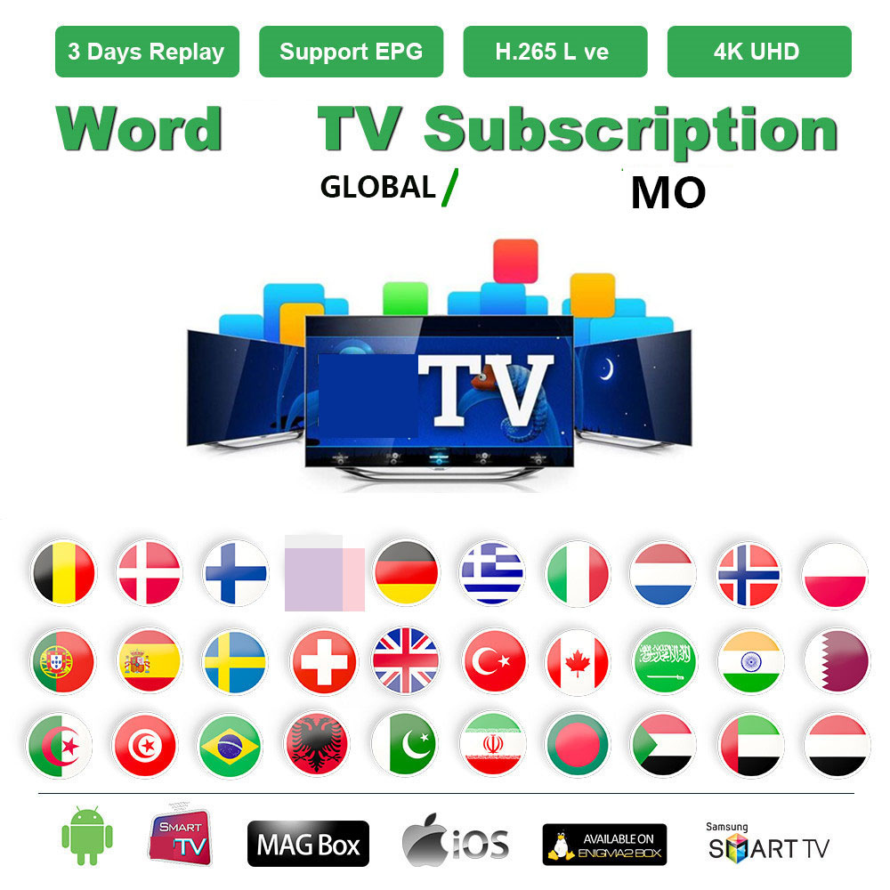 Hot  Sell  1 Year  IPTV World TV And Mov  Arabic UK Gemany Europe Tv For Tv Box Only No Channels Included