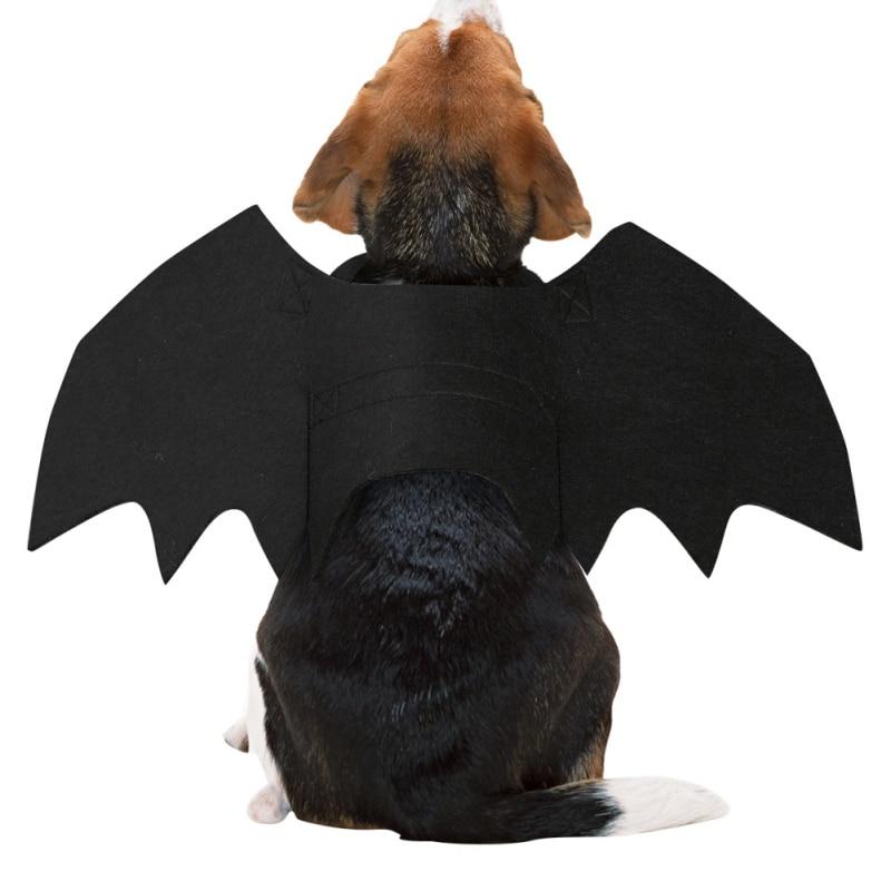 bat wings dog costume