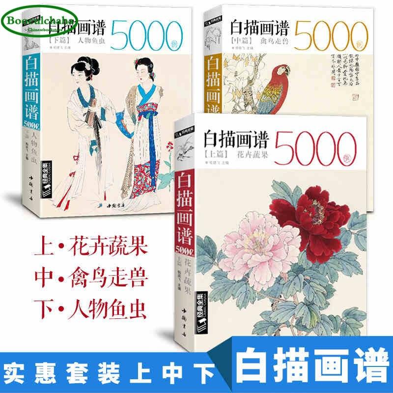중국어 화이트 라인 그리기 책 세트 꽃, 과일 야채 + 새, 짐승 + 한자 및 물고기 곤충 그림의  그룹 1