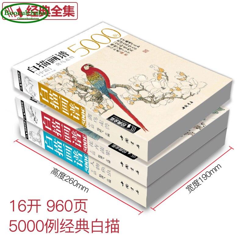 중국어 화이트 라인 그리기 책 세트 꽃, 과일 야채 + 새, 짐승 + 한자 및 물고기 곤충 그림의  그룹 2