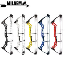 Archery M108 Compound Bow With Bow limbs Stabilizer 30-55lbs Adjustable IBO 300FPS Let off 80% Hunting Shooting Accessories 30 55lbs archery compound bow set with bowstring stabilizer bow limbs stabilizer ibo310fps outdoor hunting shooting accessories