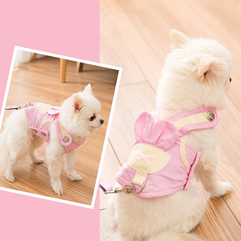 2021 Dog Harness Leash Set Cartoon Cute Vest Leads Small Medium Pet Party Collar Puppy French Bulldog Outdoor Supplies Wholesale