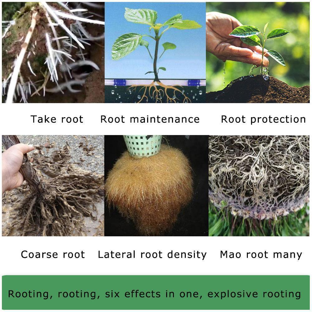 1 Pc Rooting Agent Flower Vegetable Liquid Rooting Agent Transplanting Cuttings Promote Root Transplant Seedlings Flower P0X5