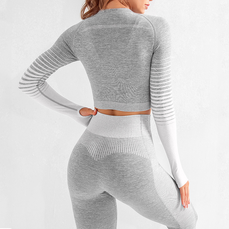 Seamless 2 Pcs Yoga Set Women Long Sleeve Top High Waisted Tummy Control Sport Leggings Gym Clothing Ombre Seamless Sport Suit