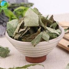 Epimedium deixa homem e mulher saúde sexual erva chá orgânico puro selvagem alta montanha tesão cabra erva herba epimedii