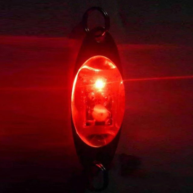 LED Fish Lure Light Deep Drop Underwater Eye Shape Luminous Fishing Bait Attract