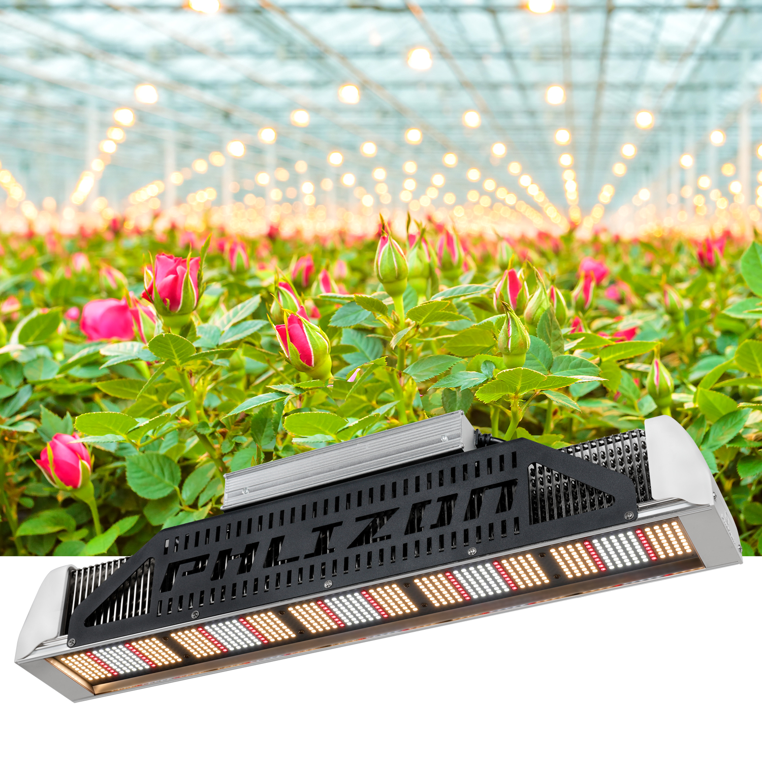 Phlizon Waterproof Plant Grow Light Full Spectrum Led Lamp 240W Hydroponic Cultivation Lamp Indoor And Outdoor