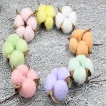 6 sztuk naturalny suszony kwiat kolorowe bawełniane kwiat głowy Kapok bawełna DIY boże narodzenie wieniec materiały Home Decor zaopatrzenie firm