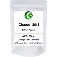 Extrato puro de cissus 20:1 em pó, cissus repens, cissus repens lank, cissus quadrangularis folha repens extrato suplemento corpo