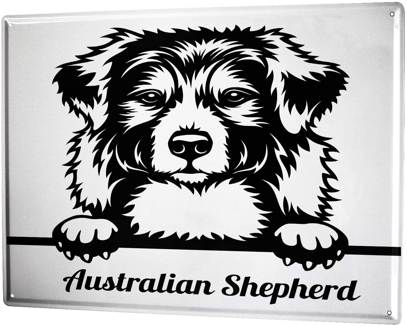 SINCE 2004 Tin Plate Dogs Breed Australian Shepherd Dog