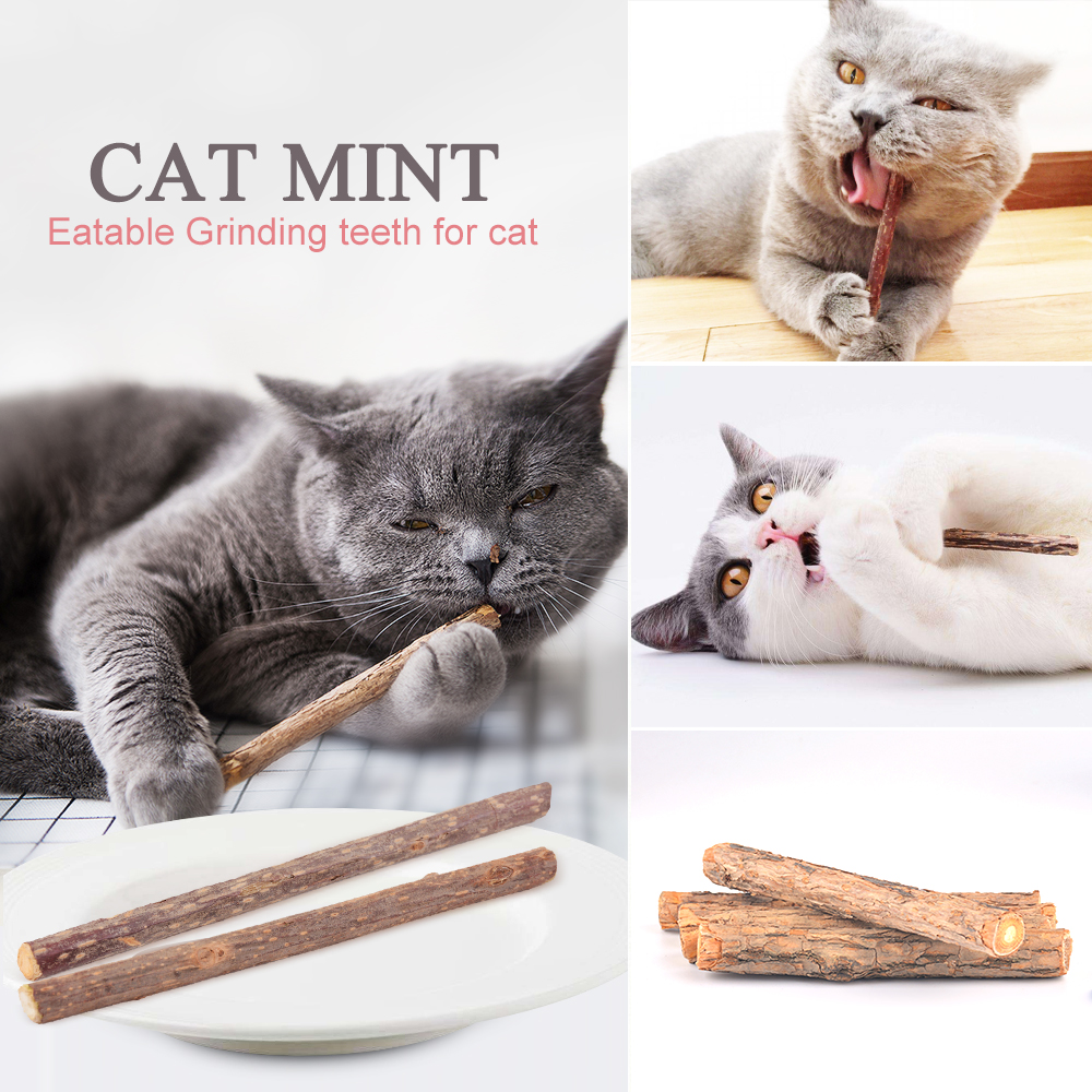 5pcs/lot Cat cleaning teeth Pure natural catnip pet cat molar Toothpaste Stick Fruit Matatabi Cat Snacks Sticks Pet Cat Supplies