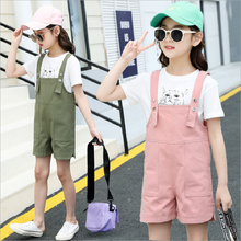 Summer Children Clothes Girls Sets Cotton Cartoon T-Shirt and Short Pants Sets For Girls Kids Clothes Baby Girls Overalls Sets