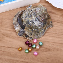 Multicolor DIY Beautiful Love WISH Pearl Mussel SHELL Oyster (China)