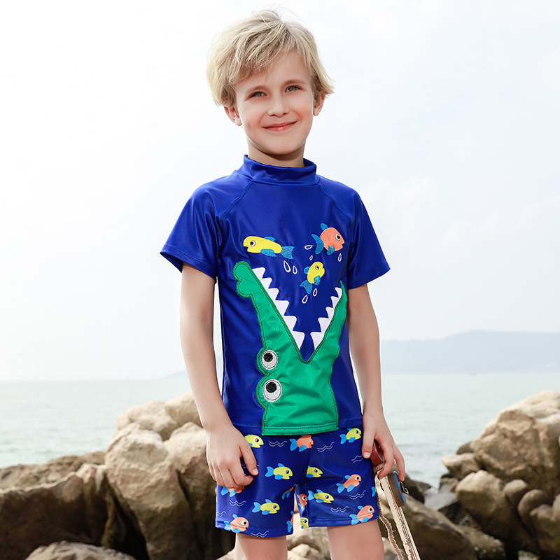 2019 New Style KID'S Swimwear Cartoon BOY'S Swimsuit Embroidered Craft Children Two-piece Swimsuits Baby Bathing Suit