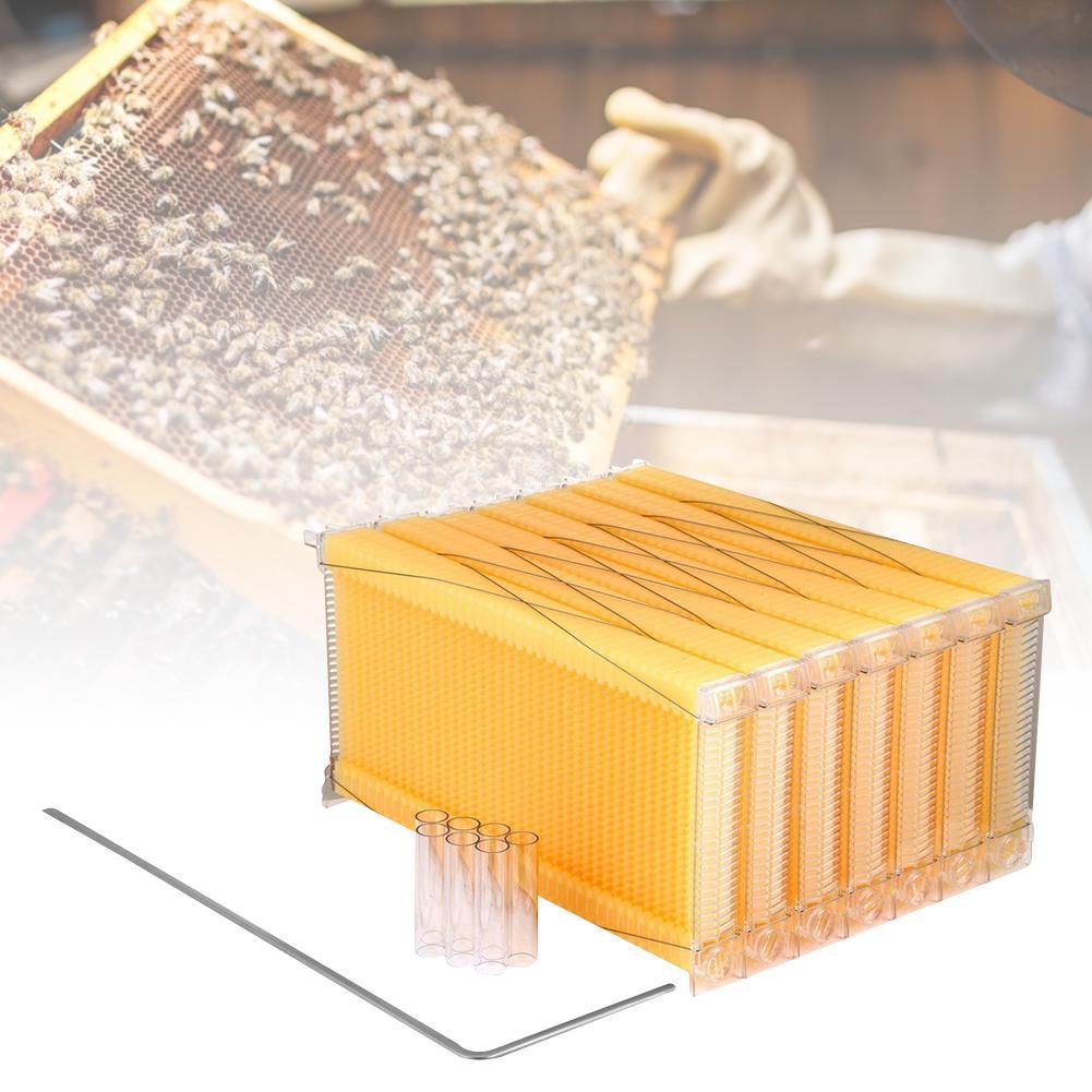 7 Pcs Automatic Honey Collection Nest Frame Beekeeper Beehive Food-grade Plastic Honeycomb Block Bee Spleen Box Beekeeping Tool