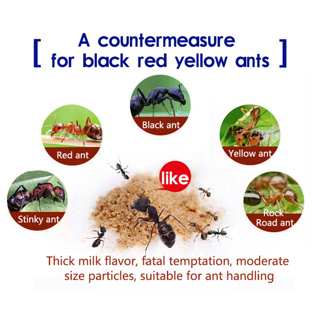 1/10/30PCS Ant Baits Insecticide Bug Beetle Insect Reject Killer Pest Efficient Repellent Trap Killer Pest Control Destroy Ants