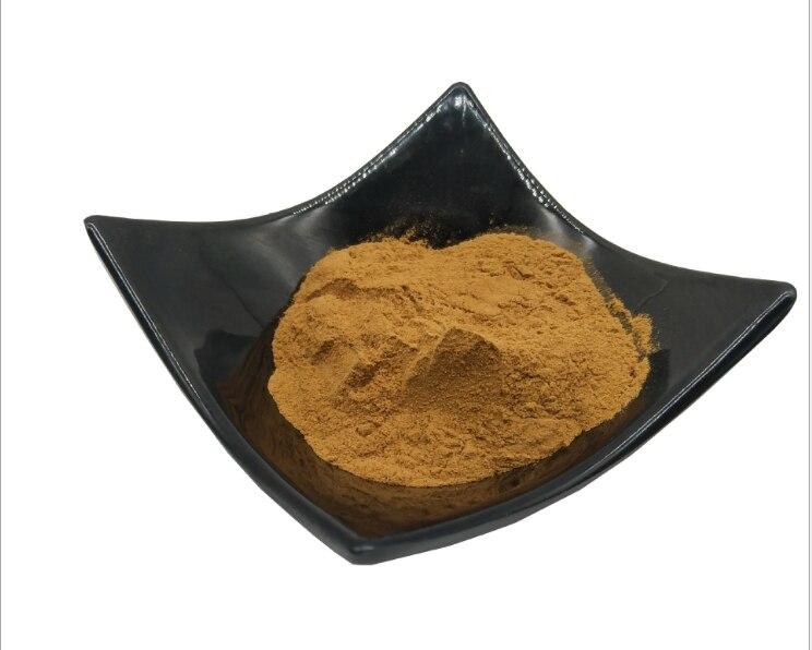 Extrait de Grifola frondosa de haute qualité/extrait de champignons Maitake 50%