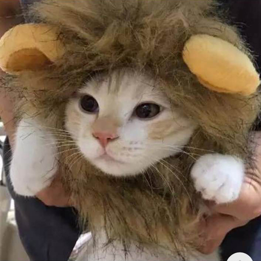 Cats Accessories Pet Costume Lion Mane Wig Hat Dog Cat Dress Up Halloween Decoration in Cat Accessories from Home Garden