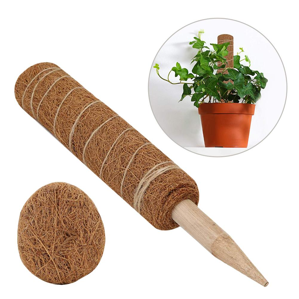 60cm Coir Moss Pole Totem with Wooden Stake for Climbing Houseplants