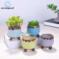 Strongwell-minimacetas de cerámica para plantas suculentas, maceta para vivero, caja para ventana, flores a través de la maceta, suministros de Jardín de plantas