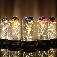 Luminous Gold Foil Rose LED Glass Cover Preserved Flower ValentineS Day Gift Immortality Flowers