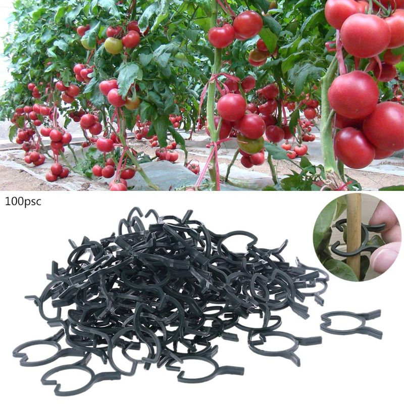 100Pcs Plant Garden Clips Vegetable Plant  Vine Support Clips For Holding Plant Stems E65B
