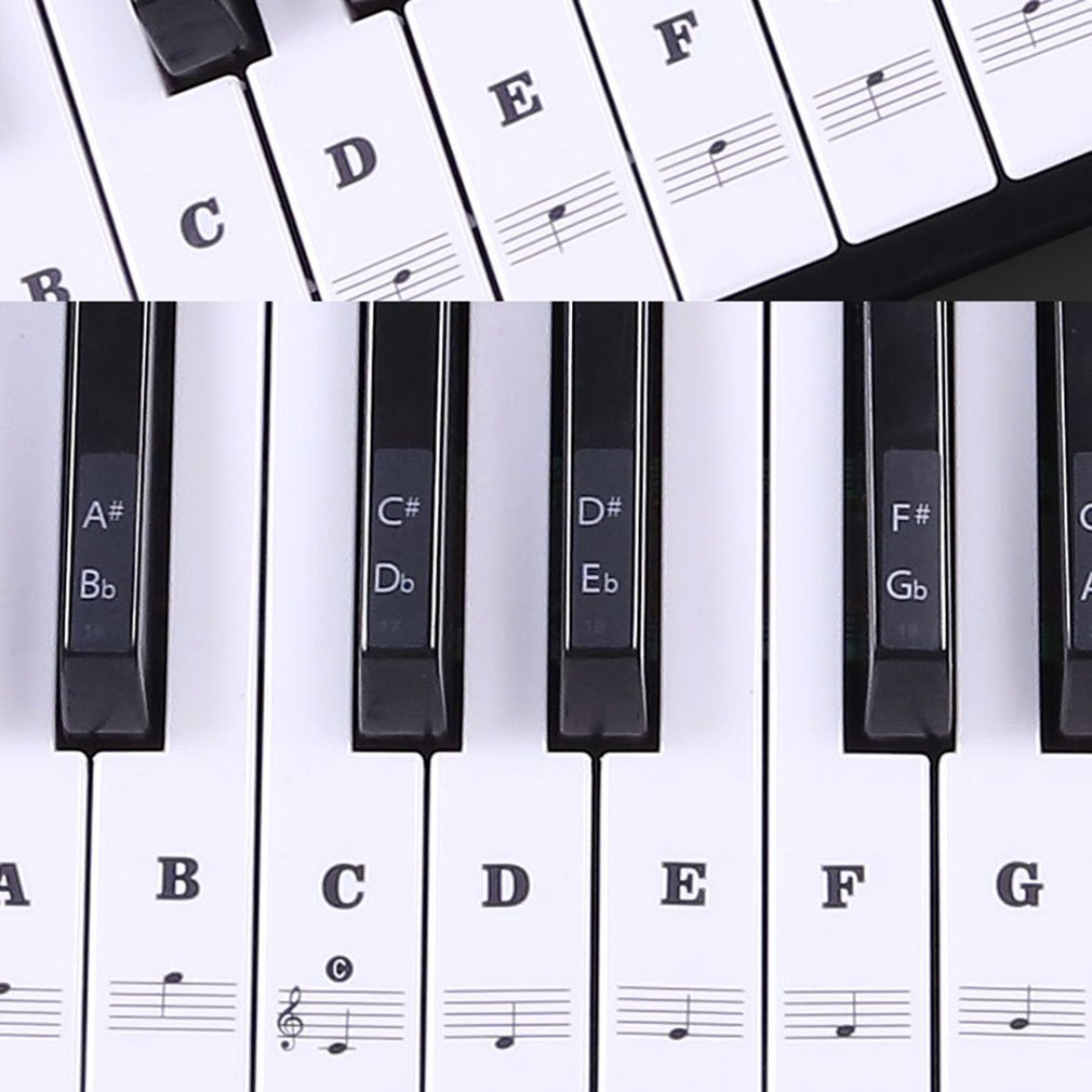 Transparent Piano Note Label on the keys