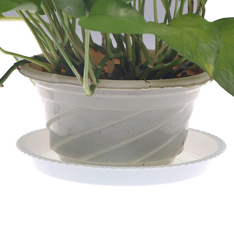 пластик сад цветок горшок растение блюдца вода лоток основание закрытый открытый прозрачный