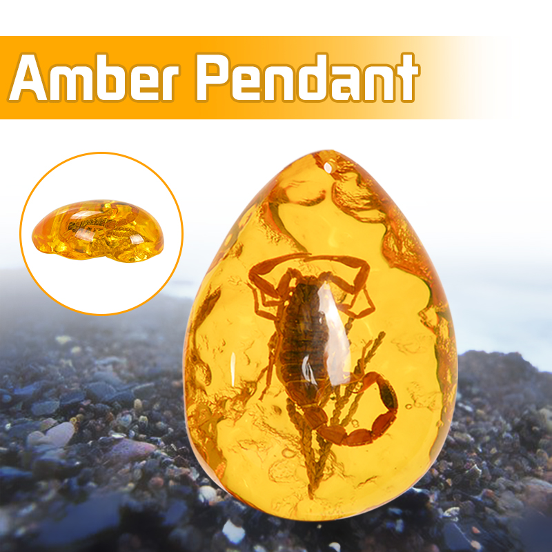 Natural Scorpions Insect Inclusion Amber Baltic Gemstone Pendant Necklace Sweater Decorations DIY Ornament Craft Gift(China)