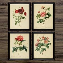 Ilustraciones de plantas antiguas, pósteres de lona, impresiones botánicas Vintage, estudios de oficina, decoración de pared imágenes artísticas, pintura de flores rosas