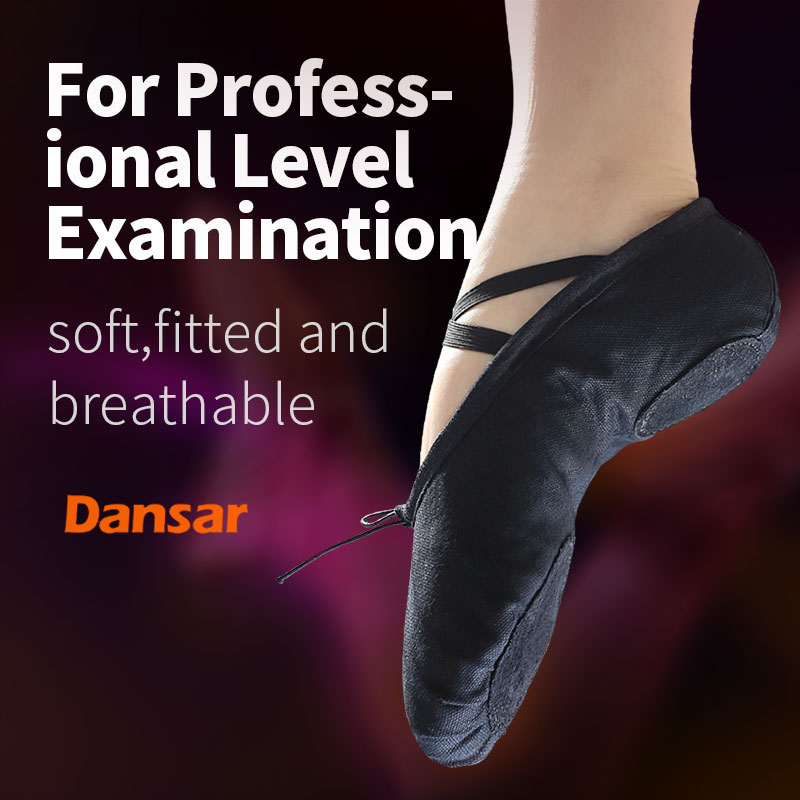 Pointe Dance Shoes For Women Men Girls Children Kids,Ballet Shoes,Yoga Flat Slippers,Soft Soles Training Shoes Cat Paw Shoes