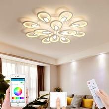 New Nordic modern living room LED ceiling lamp APP RC dimming lamp bedroom corridor LED chandelier hotel lighting villa lamp
