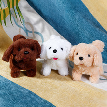 2020 New Doll Walking Singing Musical Robot Hairy Dog Rabbit Electronic pet Toys Plush Toy Christmas Gift For Kids In Color Box
