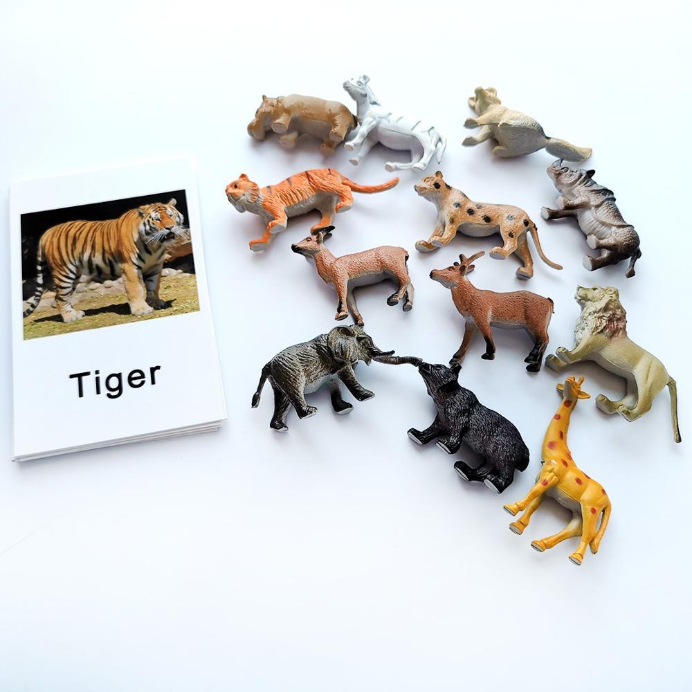 24 шт./компл. Монтессори Детские обучение английскому языку животные детские карты для раннего развития детей практической жизни игрушки для детей L2666F 6