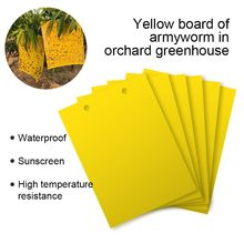 Strong Flies Traps Bugs Sticky Board Catching Aphid Insects Pest Killer Outdoor Fly Trap for Aphids Fungus 10/20/30/50/100pcs