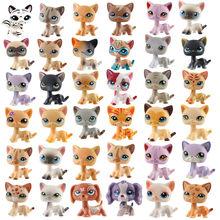 Original pequeno pet shop lps cat collection raro pé shorthair brinquedo cão de alta qualidade móvel boneca modelo brinquedo presente do miúdo