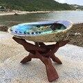 Натуральная новозеландская раковина abalone большой раковины сделай сам украшение для дома Аквариум Ландшафтный дизайн Свадебный пейзаж деко...
