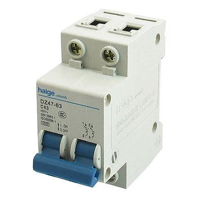 AC 400V 63A 4500 A Two Poles 2P MCB Mini Circuit Breaker DZ47-63 C63