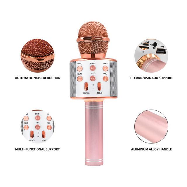 Wireless Microphone Professional Speaker Handheld Microphone Player Singing Recorder