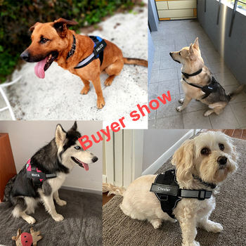 Personalized Dog Harness NO PULL Reflective Breathable Adjustable Pet Harness For Small large Dog Harness Vest With Custom patch 6