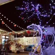 20 LEDs Round Ball String Light Plug In Bulb Waterproof Holiday Party Home Porch Q84D for LED
