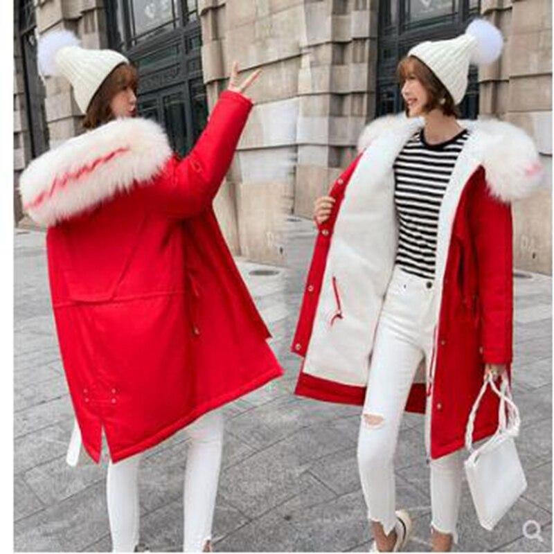2019 veste d'hiver femmes fourrure à capuche Parka longs manteaux broderie coton rembourré manteau d'hiver femmes chaud épaissir Jaqueta Feminina