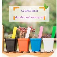 100/200pcs  New Design Waterproof Plastic Plant Seed Labels Pot Marker Nursery Seedling Garden Stake Tags Cute