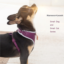 Dog Cat Harness Leash Sets for Small Pets Adjustable Vest  Walking Lead Leash for Puppy Dog  Chest Strap Leash Harness Suit Set цена