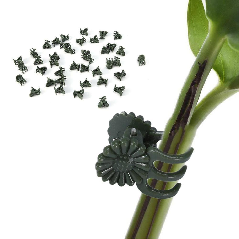 100PCS Plastic Plants Orchid Clips Garden Support Flower Vines Stem Grow Upright