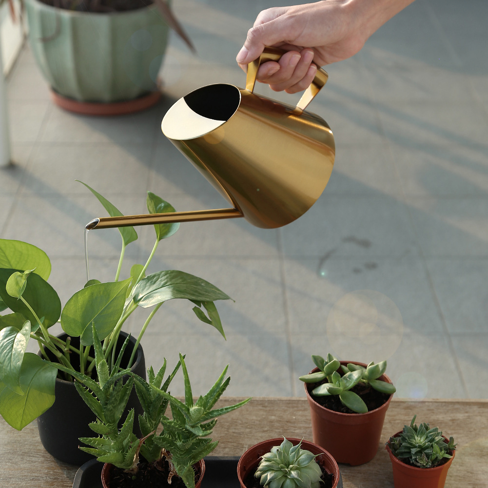 Stainless Steel Watering Can Bonsai Plants Handheld  Water Pot With Long Spout Indoor Outdoor Watering Plants Flower Garden Tool
